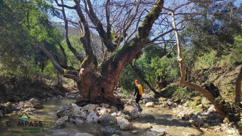rivertrekking-10